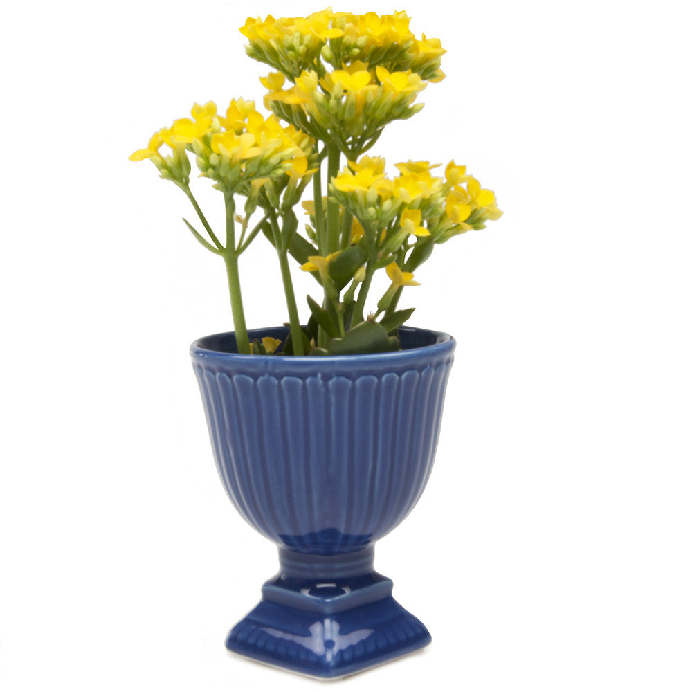 Chive Brilliant - Large Blue Ceramic Potted Planter