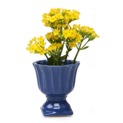 Chive Brilliant - Medium Blue Ceramic Potted Planter