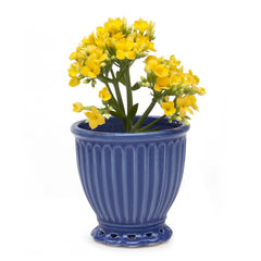 Chive Brilliant - Small Blue Ceramic Potted Planter