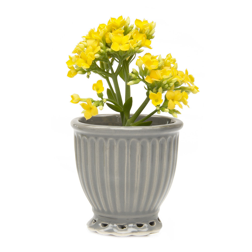 Chive Brilliant - Small Grey Ceramic Potted Planter