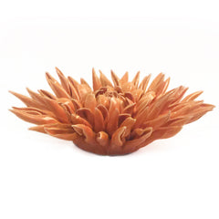 Chive Coral 2 - Large Orange, Ceramic Decorative Floral Accessory