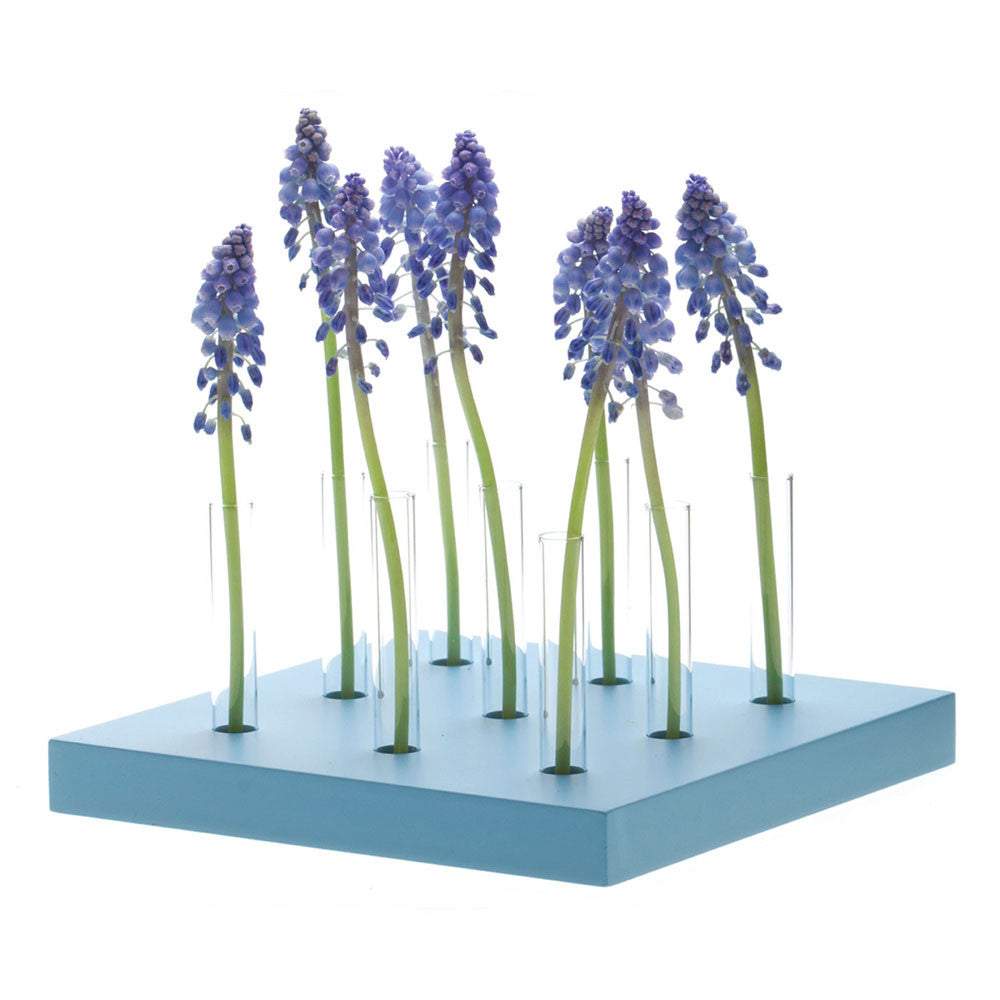 Chive, Calla - 9 Hole Blue multi test tube bud vase