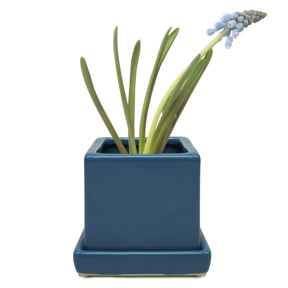 Chive Cube and Saucer - Biscay Blue, Cube Ceramic Pot and Saucer