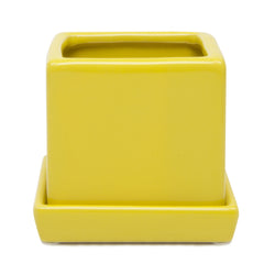 Chive Cube and Saucer - Yellow, Cube Ceramic Pot and Saucer Empty