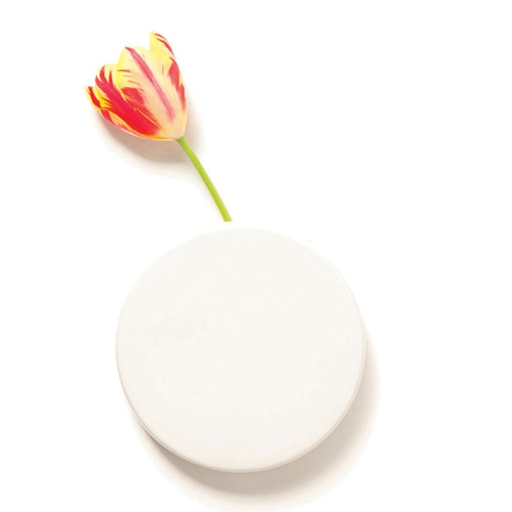 Chive Dot - White Round Ceramic Wall Mount Flower Vase