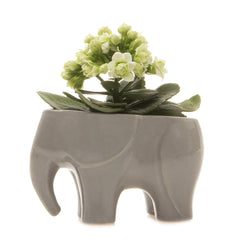 Chive Elephant - Grey, Ceramic Animal Planter