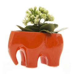 Chive Elephant - Orange, Ceramic Animal Planter