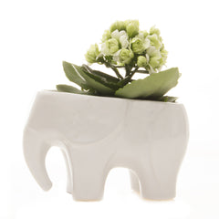 Chive Elephant - White, Ceramic Animal Planter