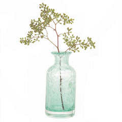 Chive Elixar - Aqua, Small Bottle Glass Bud Vase