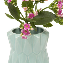 Fang Planter - Mint