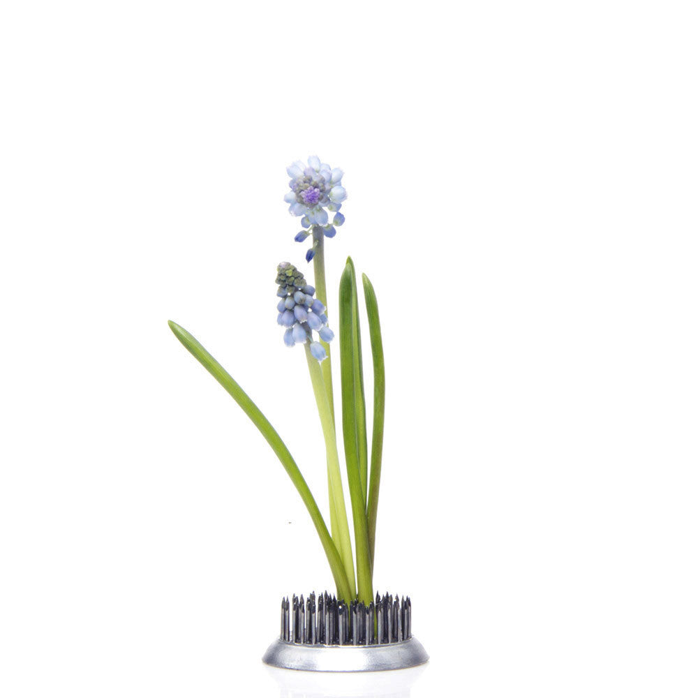 Chive, Frog - Medium stainless steel floral arrangement
