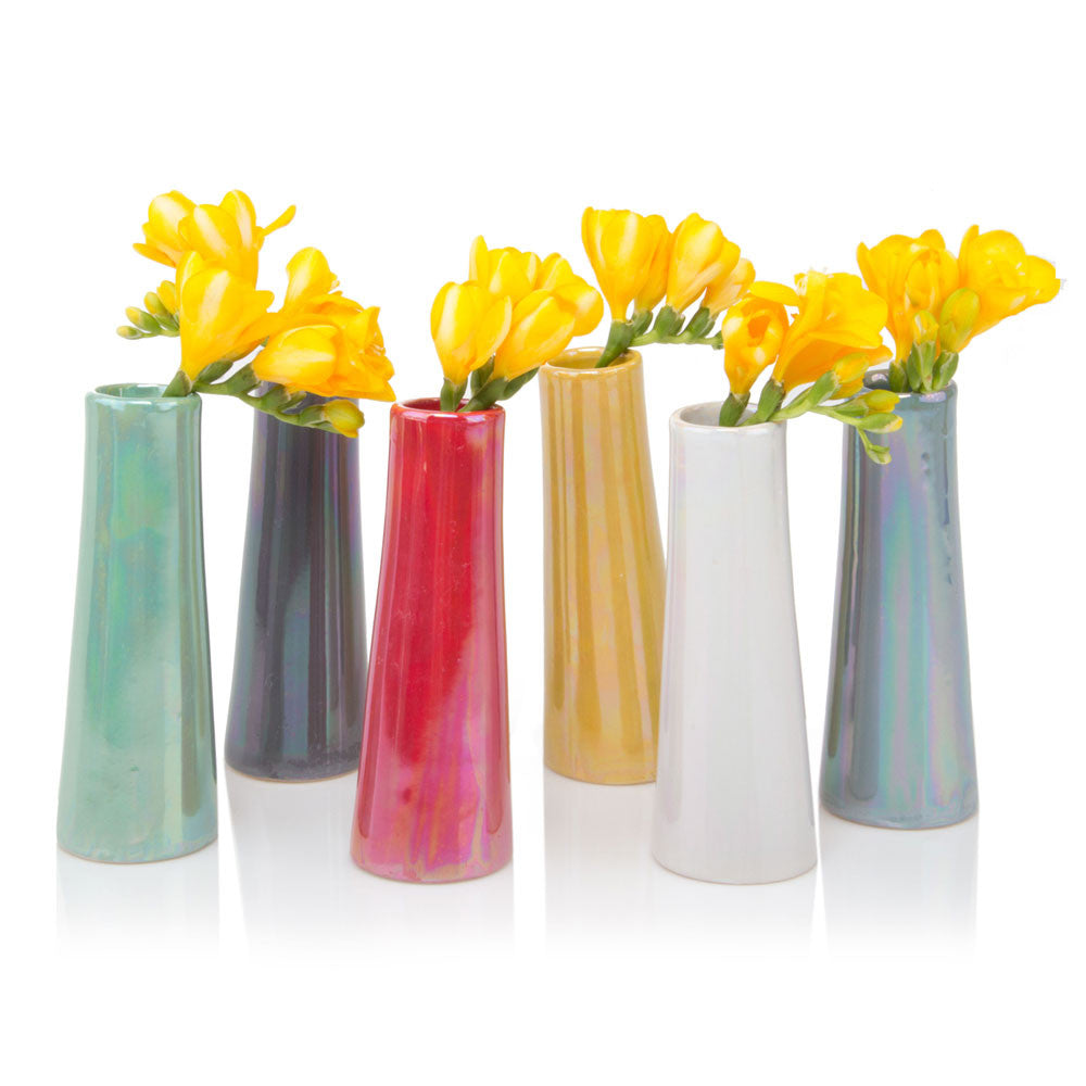 Chive Galaxy - Mix of Six Bundle of Colored Ceramic Flower Vases