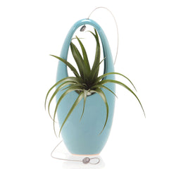 Chive, Hanging Aerium - Egg Blue ceramic hanging oval planter with cord in front
