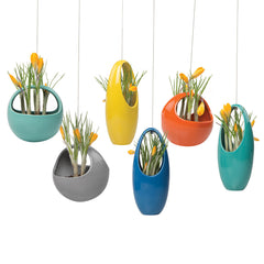 Chive, Hanging Aerium - Egg Blue ceramic hanging oval planter