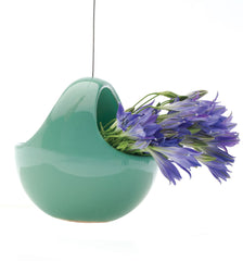 Hanging Aerium -Nest Green, Hanging Ceramic Planter