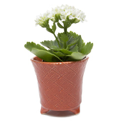 Mead Planter - Rust succulent flower pot