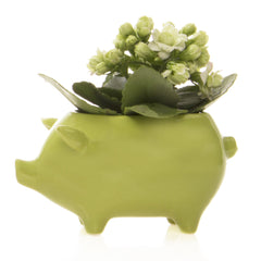 Chive Pig - Chartreuse, Ceramic Animal Flower Pot