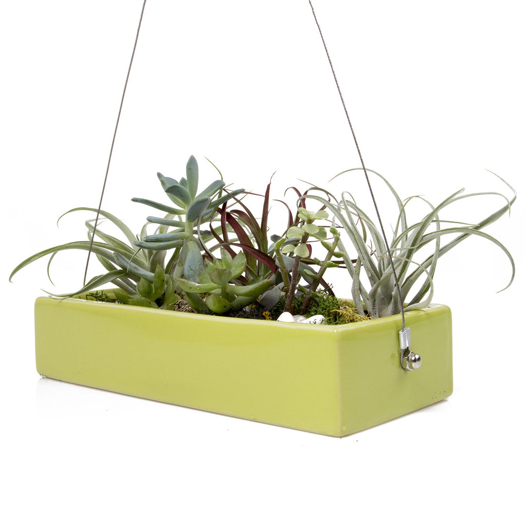 Chive, Ragna Ceramic Hanging Planter - Charteuse