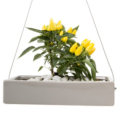 Chive, Ragna - Ceramic Hanging Planter Grey