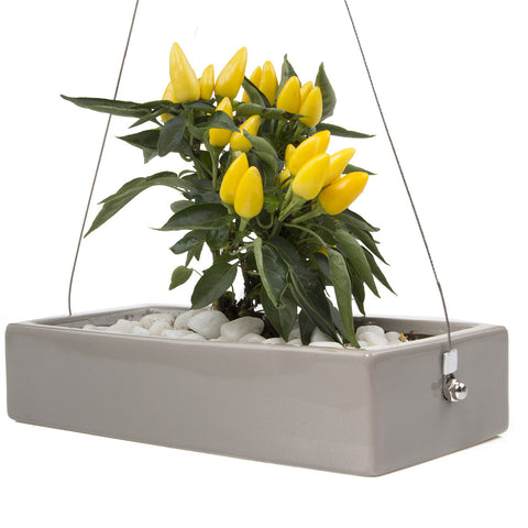 Ragna - Hanging Planter Grey