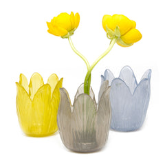 Chive Retina - Mixed Bundle, Colored Glass Tellsia Flower Vase Sale