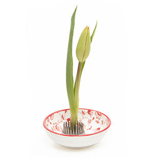 Chive Stas Dish - Red Daisy, Floral Frog
