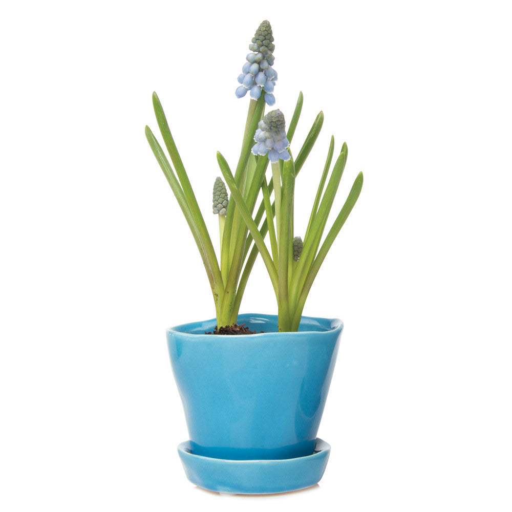 Tika Planter - Azure Blue ceramic planter with saucer