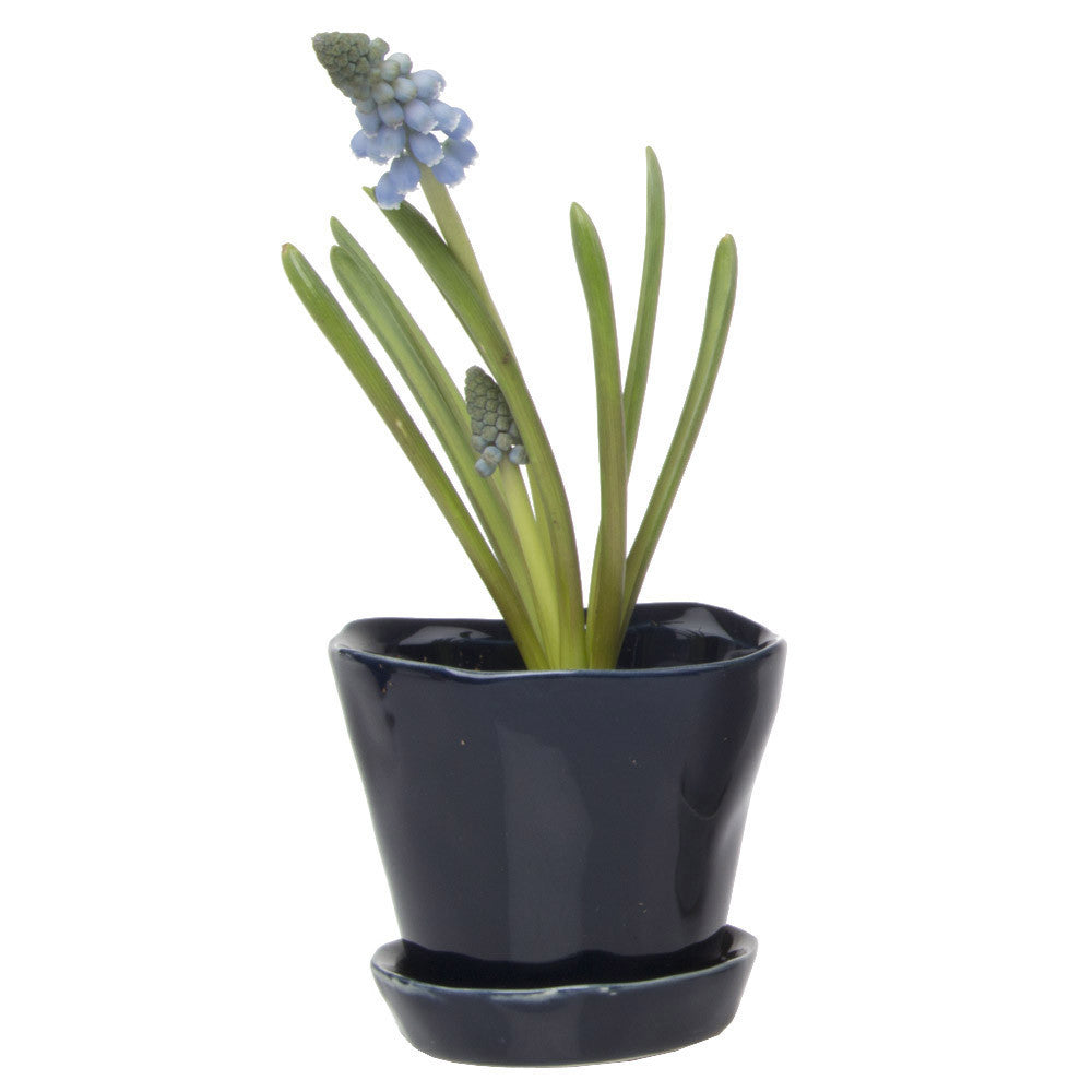 Tika Planter - Midnight  ceramic *planter with saucer*