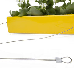 Chive, Ragna - Hanging Planter Yellow close-up on cord