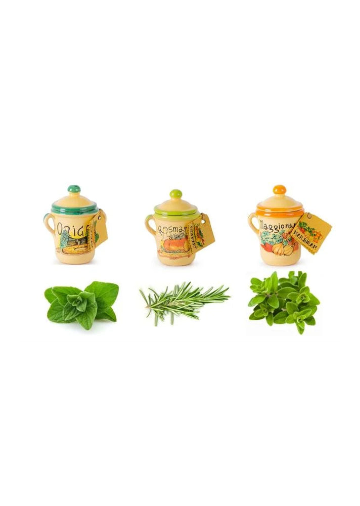 Set of 3 Terracotta Herb Pots