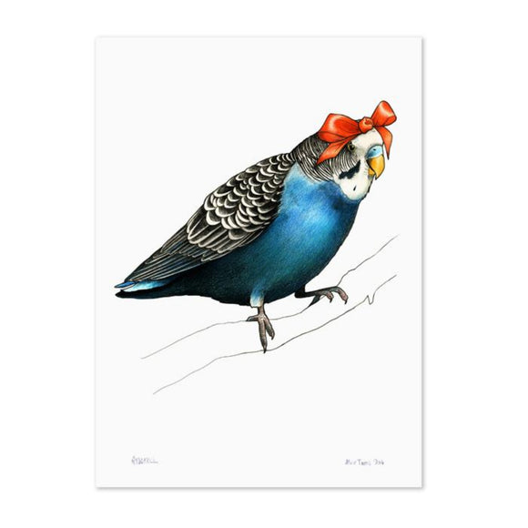 Birds In Hats Print - Budgie in a Bow A4 from have you met charlie a gift shop with Australian unique handmade gifts in Adelaide South Australia