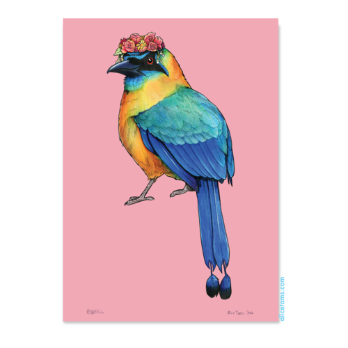 Birds In Hats Print - Limited Edition Blue-crowned Motmot