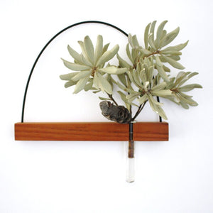 kirralee and co handmade wall decor plant holder and key holder made from wood from have you met charlie a unique gift shop in adelaide south australia with handmade products