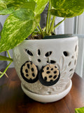 Round Animal-Print Earrings