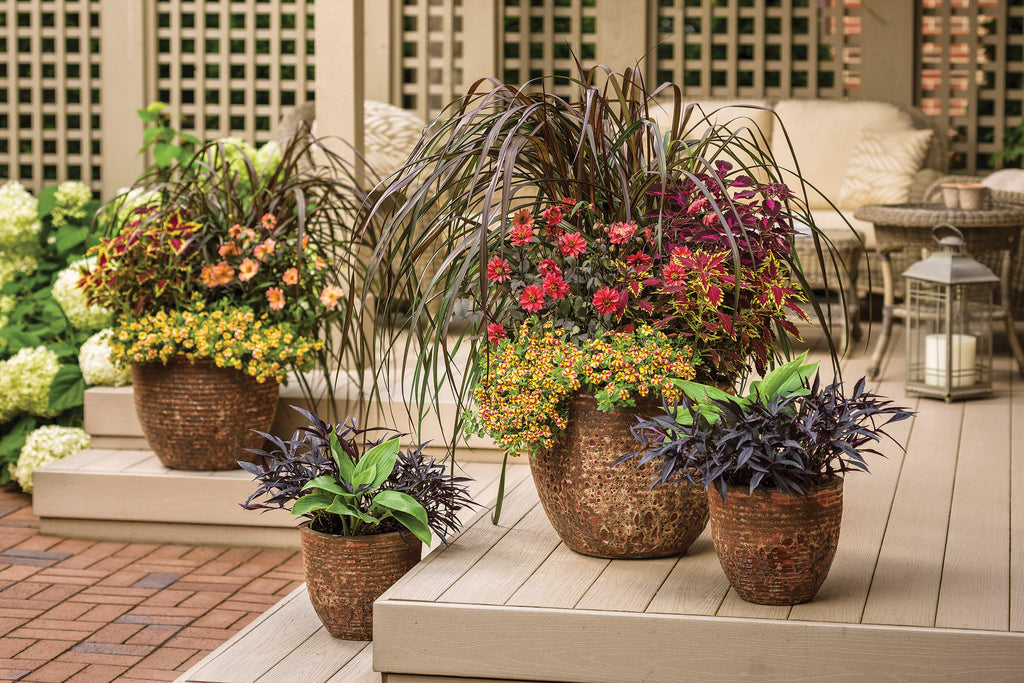 CONTAINER GARDENING SIMPLIFIED