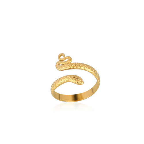 Snake ring goud roestvrij - By Rachella