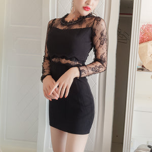 1497 Bodycon Mini Dress in Sheer Lace with 2 patterns
