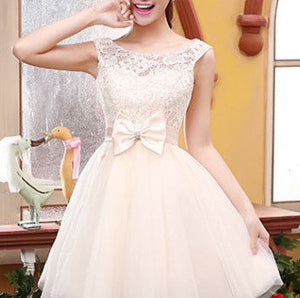 #361 Embroidered Lace Chiffon Lace Skater Mini Dress with Band and Bow