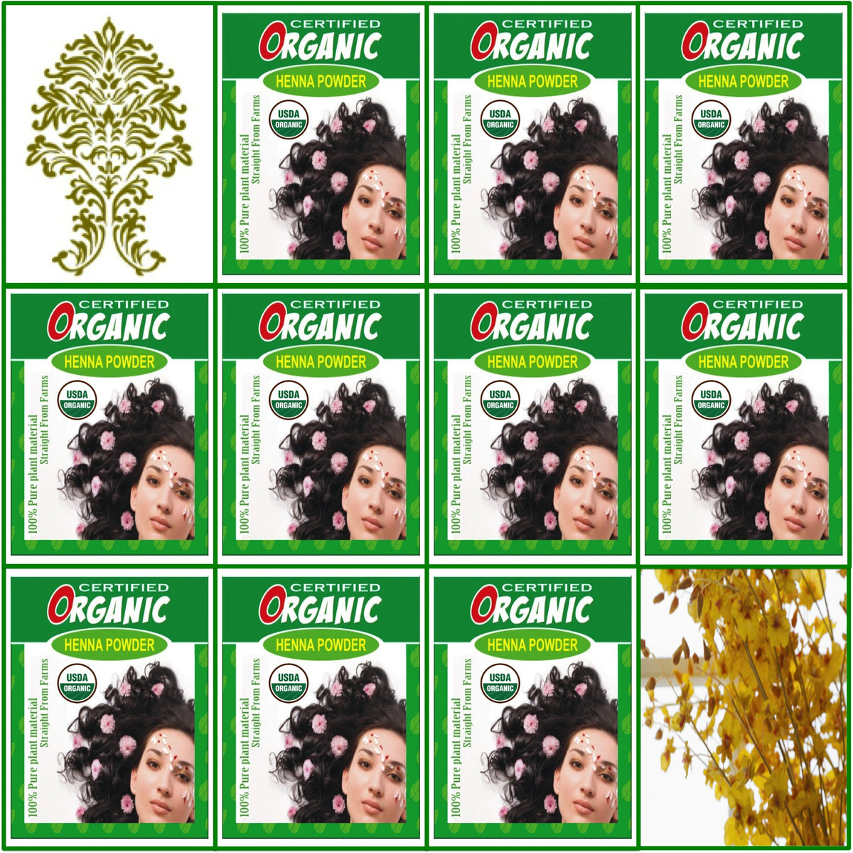 10 Boxes USDA Certified Organic Henna Hair Color 100g Each
