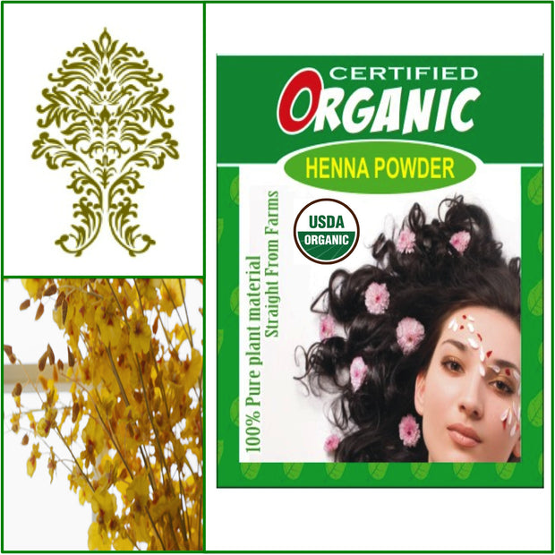 ONE Box. USDA Certified Organic Henna. Hair Color. 100g.