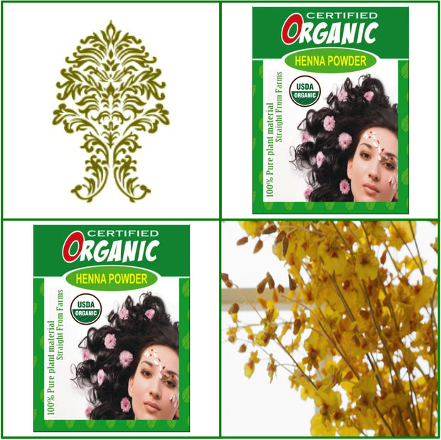 2 Boxes. USDA Certified Organic Henna. Hair Color. 100g Ea.