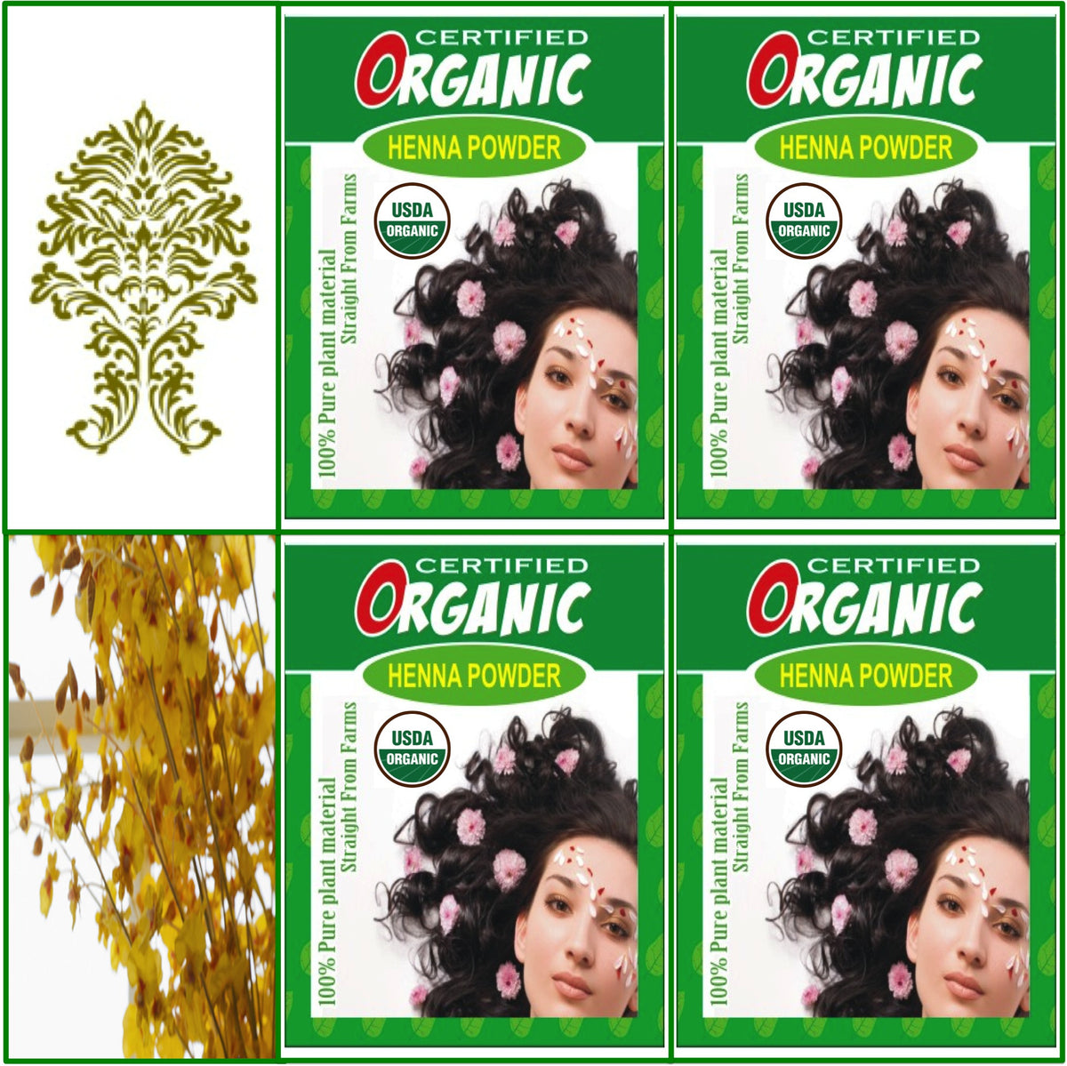 4 Boxes. USDA Certified Organic Henna. Hair Color. 100g Ea.