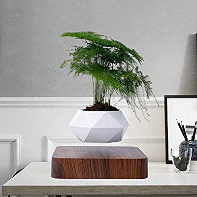 AiroPot Levitating Plant Pot