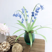 Bluebell Paper Flower Template