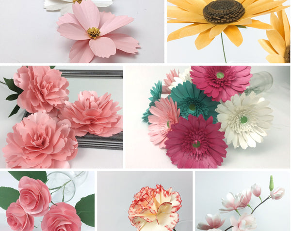 Bundle of 7 paper flower templates