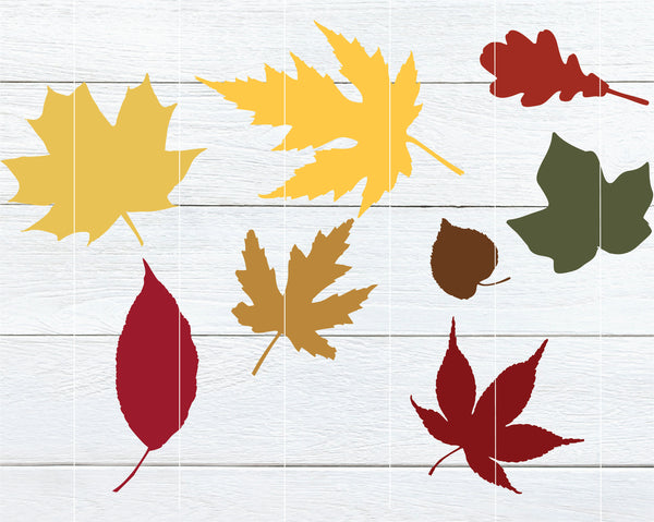 Realistic fall leaves SVG bundle