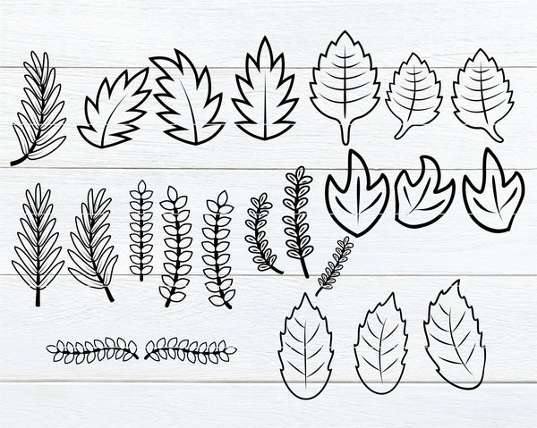 Leaves and Vines SVG