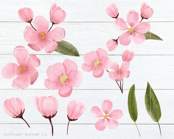 Cherry Blossom Clipart, Apple Blossom clipart