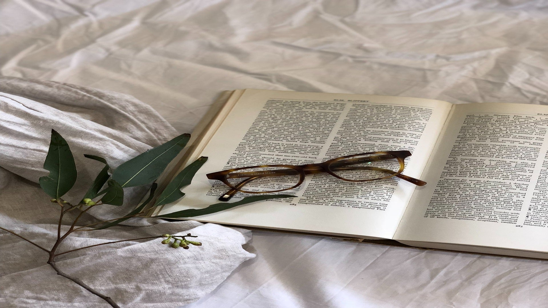 book with reading glasses and eucalyptus on bed