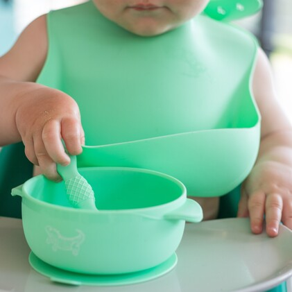 Little Giants Starting Solids Essential Bundle